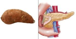 Potato-Pancreas
